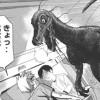 新連載【ディノサピエンス】紹介 2015年8月31日発売 週刊少年ヤングマガジン第40号